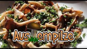 Austernpilze, Rezept, Pilzpfanne