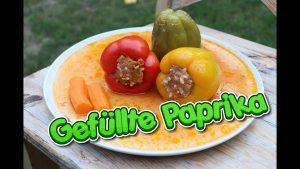 gefüllte paprika, rezept, rezept gefüllte paprika, gefüllte paprika rezept, paprika mit hackfleisch, punjena paprika, punjene paprike, recept, recipe, dolma, dolma recept, recept dolma, originalrezept dolma